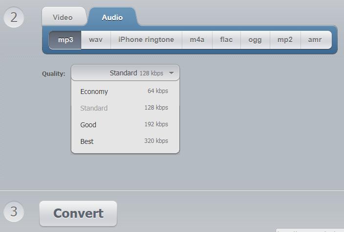 Convert Video Online -Audio Output Options