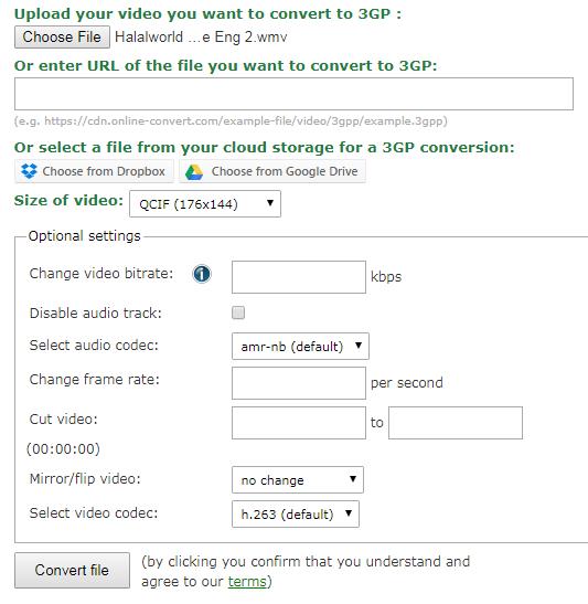 Online Convert Addditional Settings