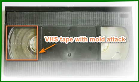 Convert VHS to DVD without a VCR  - VHS tape mold attack
